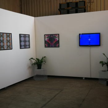 Installation view of Babalwa Tom's work