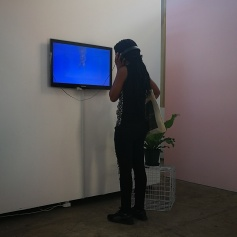 Viewer at opening reception